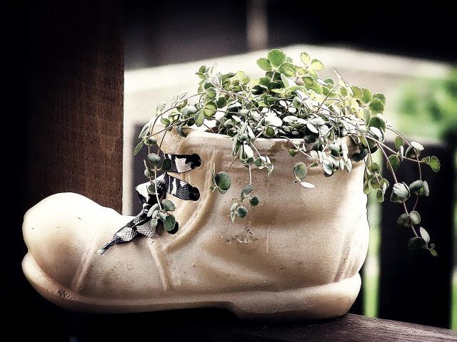 靴,クリーニング,双葉郡葛尾村